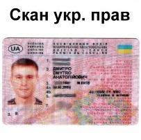 международные водительские права фото украина